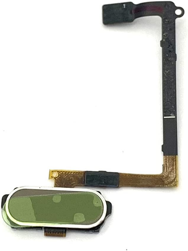 Walking Slow Replacement Gold Home Button Key Flex Cable Compatible with Samsung Galaxy S6 G920 (for All US Carriers)