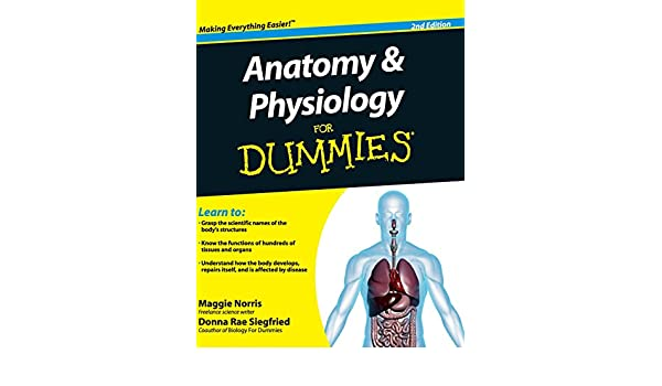 Amazon.com: Anatomy and Physiology For Dummies (9781119173748 ...