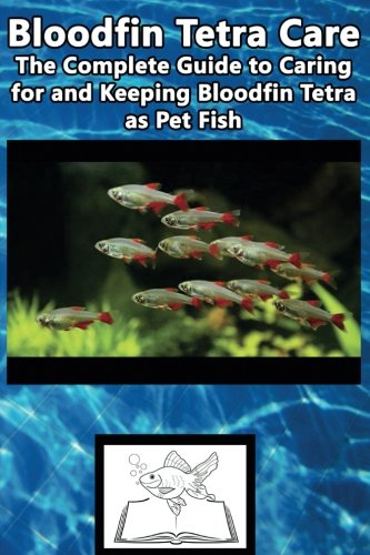 Bloodfin Tetra Care: The Complete Guide to Caring for and Keeping Bloodfin Tetra as Pet Fish (Best Fish Care Practices)