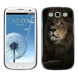 TECHCASE**Cubierta de la caja de protección la piel dura para el ** Samsung Galaxy S3 I9300 ** Lion Mane Powerful King Animal Black