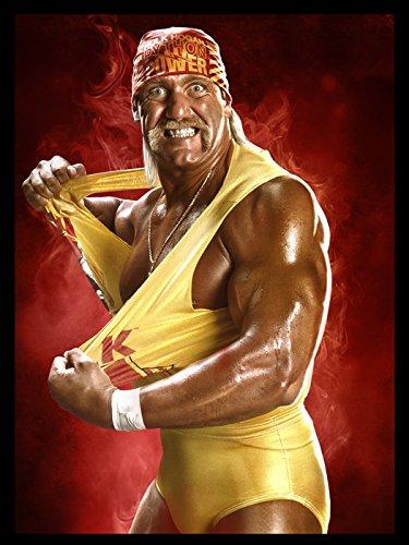 Hulk Hogan Wrestling WWE Terry Gene Bollea Sport 24x18 Print Poster (Hogan Hulk Terry Bollea)