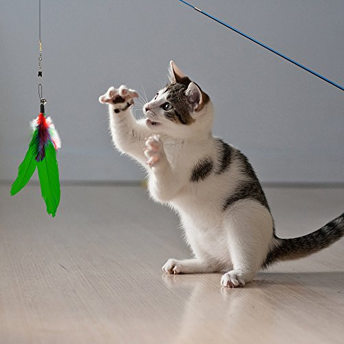 Depets Feather Teaser Cat Toy, Retractable Cat Feather Toy Wand with 5 Assorted Teaser with Bell Refills, Interactive Catcher Teaser for Kitten Or Cat Having Fun Exerciser Playing 8