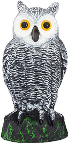Bird Blinder Scarecrow Fake Owl Decoy - Pest Repellent Garden Protector – ()