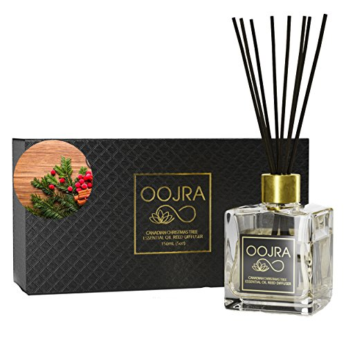Oojra Canadian Christmas Tree Essential Oil Reed Diffuser Gift Set, Glass Bottle, Reed Sticks, Natural Scented Long Lasting Fragrance Oil (3+ Months 5 oz) for Aromatherapy and Air Freshener