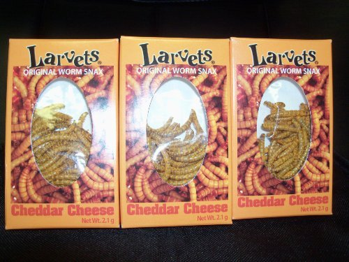 Larvets - Cheddar Cheese Flavored Worm Snacks (3 Pack) by Hotlix