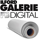 Ilford Galerie Digital Silver Black and White Photo Paper (30'' x 98' Roll, Glossy)