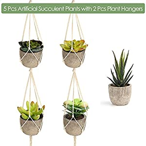 FEPITO 5 Pcs Artificial Succulent Plants with 2 Pcs Plant Hangers,Faux Succulents Artificial Large Cactus Aloe Echeveria with Gray Pots Hanging Stems Bulk for Home Indoor Decoration 2