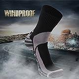 RANDY SUN Not Waterproof But Windproof