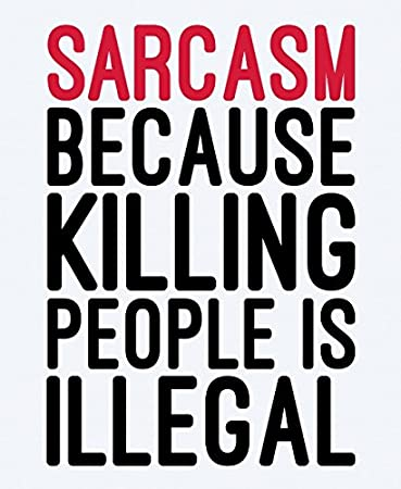 Sarcasm Funny Quote Canvas Wall Art Prints  Inch Framed Modern Decor Paintings Artwork