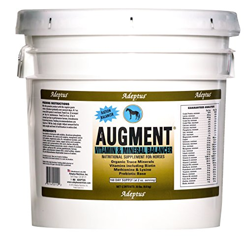 51mOXgI4cNL - Adeptus Nutrition Augment Multi-Mineral and Vitamin EQ Joint Supplements, 20 lb./12 x 12 x 12""