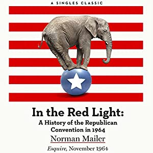 In the Red Light Audiobook