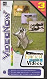 Toys : Videonow Color America's Funniest Home Videos 3 Personal Video Disc PVD Pack