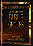 Serendipity Bible for Groups, New International Version