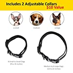 Shock Collar for Small Dogs with Remote - Includes 2 Colllars (small and medium) + FREE Dog Clicker Training – 3 Modes (sound, vibration & shock) – Save Money with Rechargeable Batteries