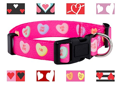 Valentine's Day Heart Dog Collar (Large, Candy Hearts)