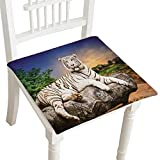 Act Folding Chairs - Best Reviews Guide