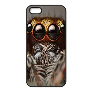 FLYBAI Colorful Spider Phone Case For iPhone 5,5S [Pattern-6]