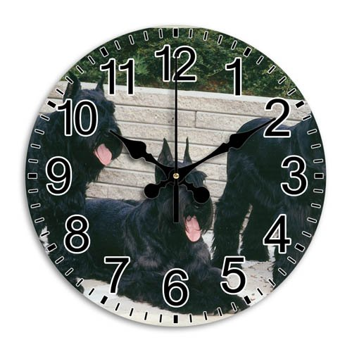 Definition Giants High Clock (Monica M Joheson Clear Top Quality Decoration Quiet Frameless Time Round Wall Clock Arabic Numbers Diameter 11.8 Inch)
