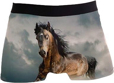 Mens 2-Pack Boxer Briefs Polyester Underwear Trunk Underwear with Sea Animals Design
