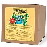 LAFEBER'S Classic Nutri-Berries Parakeet Food 20lb