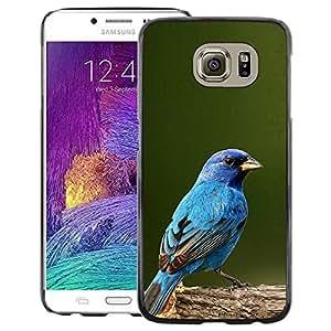 A-type Arte & diseño plástico duro Fundas Cover Cubre Hard Case Cover para Samsung Galaxy S6 (Blue Songbird Blue Spring Green Nature)