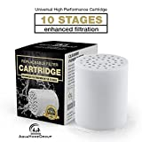 10-Stage Replacement Premium Filter Cartridge (No Housing), Compatible with Any Shower Filter of Similar Design Universal High Output EW-SF-10 AquaHomeGroup