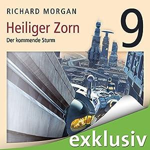 Kovacs 9: Heiliger Zorn III Hörbuch
