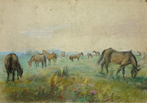 Horses grazing by
