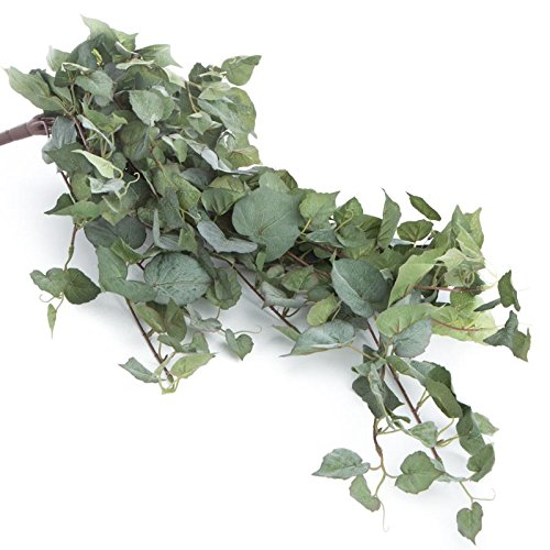 - Factory Direct Craft Artificial Pothos Ivy Bushes| 2 Greenery Bushes