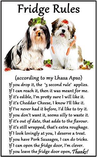 hiusan Lhasa Apso Gift - Fridge Rules Funny Fridge Stickers Warning Stickers Peel and Stick Kitchen Home Decor (Warning Lhasa Apso)