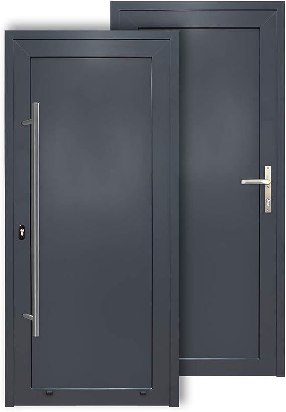 Puerta de aluminio de alta calidad, color antracita, 1000 x 2000 mm: Amazon.es: Bricolaje y herramientas