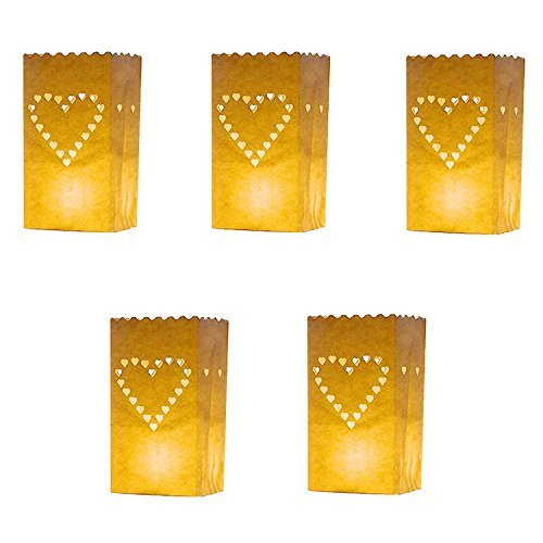 iShine 10 Packs Luminary Paper Lantern, Big Love