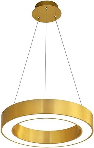 HAIXIANG Acrylic Ring Chandelier LED Pendant Lighting Ceiling Lamp Fixture Gold Dimmer Light