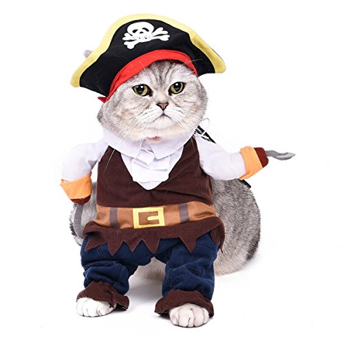 PAWZ Road Halloween Pirates Pet Costume L