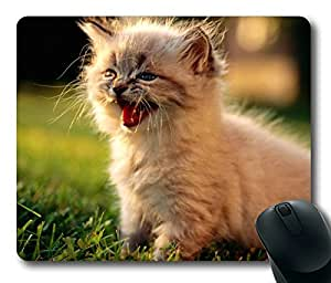 Cute kitten Masterpiece Limited Design Oblong Mouse Pad by Cases & Mousepads