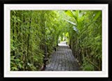 GreatBIGCanvas ''Stone Pathway in Tropical Rainforest, Ubud, Bali, Indonesia'' Photographic Print with black Frame, 36'' X 24''''