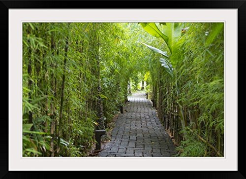 GreatBIGCanvas ''Stone Pathway in Tropical Rainforest, Ubud, Bali, Indonesia'' Photographic Print with black Frame, 36'' X 24'''' by greatBIGcanvas