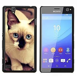 TECHCASE---Cubierta de la caja de protección para la piel dura ** Sony Xperia C4 ** --Siamese Cat Thai Bali Blue Eyes