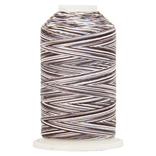 (Threadart Variegated 100% Cotton Thread 600M | For Quilting, Sewing, and Serging | Color 0415 Stormy | 40/3wt | 22 Colors Available)