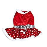 Silver Paw PEPU3013 Christmas Dog Costumes, X-Large, Mrs. Santa Paws