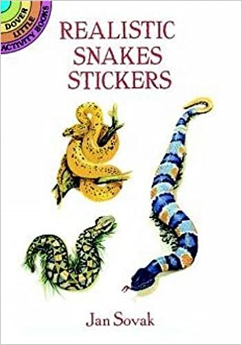 Book Realistic Snakes Stickers (Dover Little Activity Books Stickers) by Jan Sovak (1995-08-24)