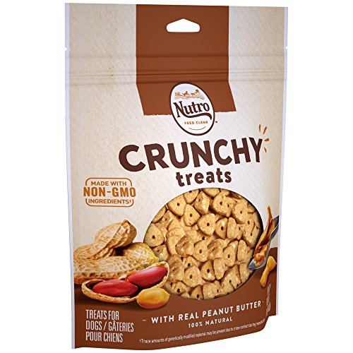 NUTRO Crunchy Dog Treats with Real Peanut Butter, 16 oz. -