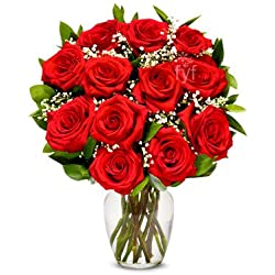 One Dozen Premium Long Stemmed Red Roses for Valentine's Day (Free Vase Included)