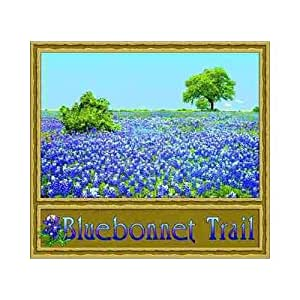 Bluebonnet Trail Coverlet Home Kitchen