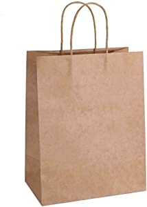 "10.6x7.9x4.3"" Kraft Paper Bags 100pcs Gift Bag with Handles for Wedding Party Craft Retail Packaging,Recycled Twist Handles Brown Shopping Bags (Brown,S-100)"