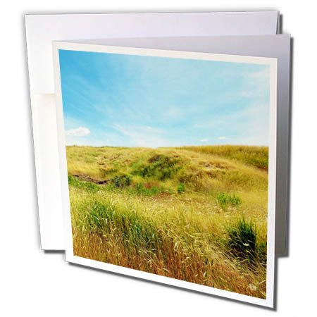 3dRose Jos Fauxtographee- Meadow on a Hill - A golden Meadow going up a hill in green and golden tones - 1 Greeting Card with envelope - Utah Field Hill