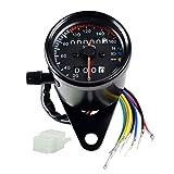 Universal Motorcycle 12V Dual Odometer Speedometer Gauge LED Backlight Turn Signal Lamp Kit