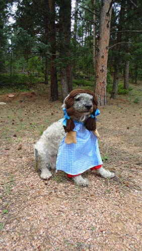 Dog Dorthy Halloween Costume in Size Medium with dress, bloomers, and hat! -