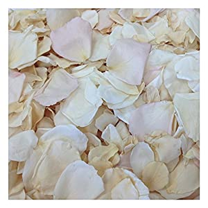 Shabby Chic Rose Petal Blend. Real Rose Petals. Wedding Petals from Flyboy Naturals 15 Cups 7