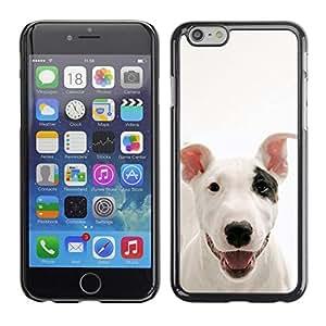 Be Good Phone Accessory // Dura Cáscara cubierta Protectora Caso Carcasa Funda de Protección para Apple Iphone 6 Plus 5.5 // American Pit Bull Terrier Dog Canine Pet